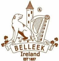Belleek Celtic Mugs